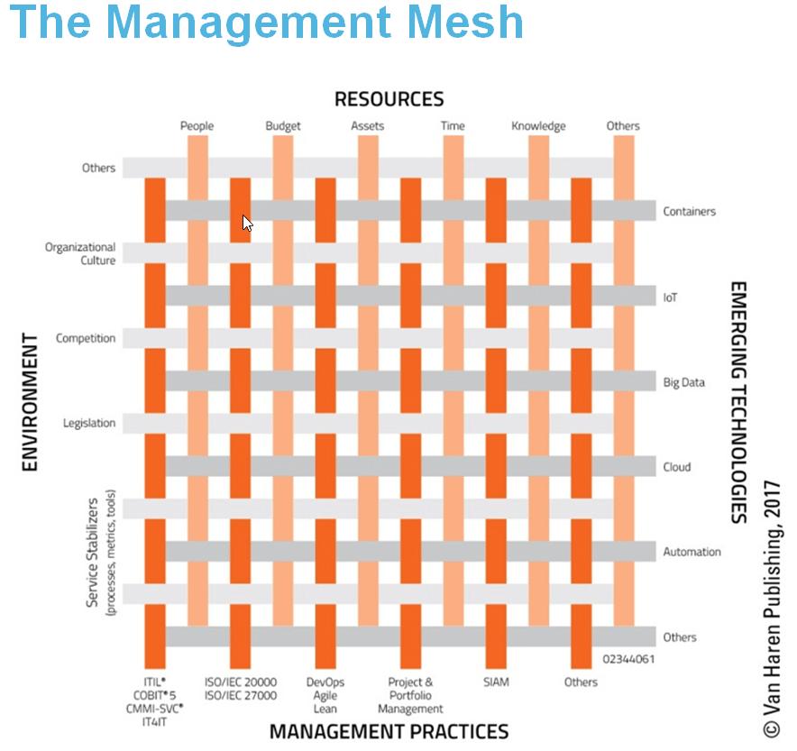 Management Mesh