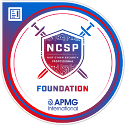 NIST CSF Professional Foundation Certification Training