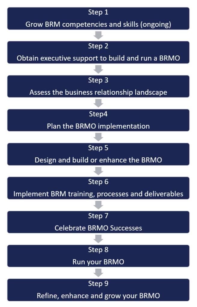 Nine Steps to Plan - Build - Run a BRMO